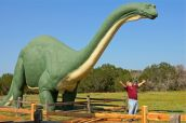 8-GlenRose - Dinosaur08