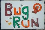 BugRun 19