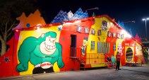 CarnivalAtFrys 14